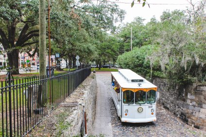 I have done one of these tours of Savannah before and really enjoyed it, but we didn't have time for one this trip.